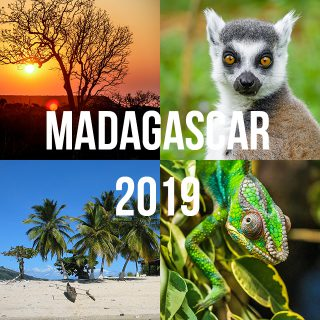Read more about the article MADAGASKAR