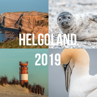 Read more about the article HELGOLAND